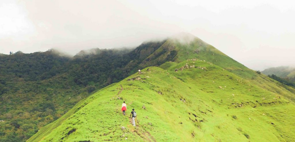 8 Reasons to Go on a Trek Right Away | Munnar - Top Station
