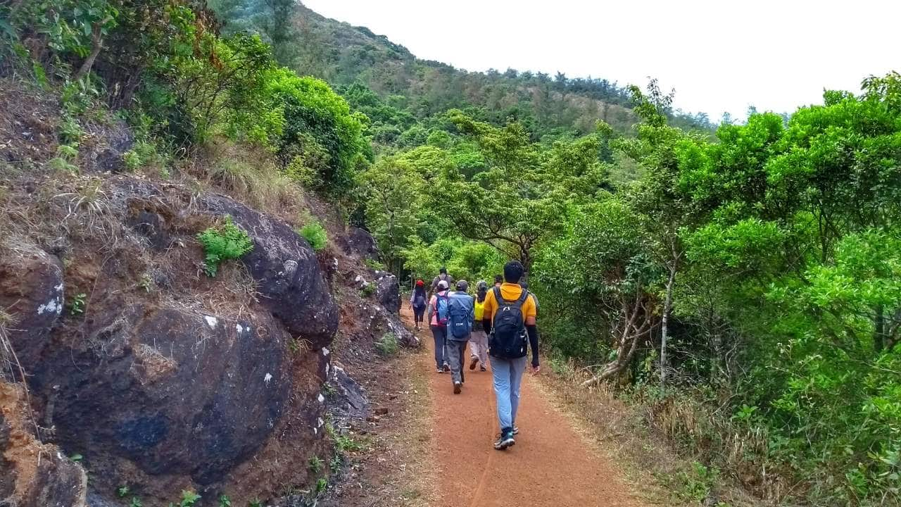 Coorg Trek - Plan The Unplanned 10