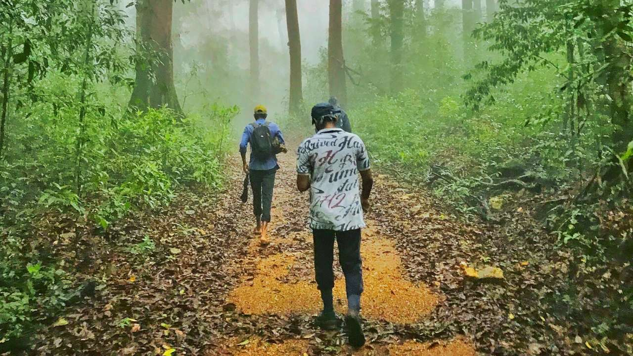 Mystery or just misty?- A monsoon story lived in the Kurinjal Trek