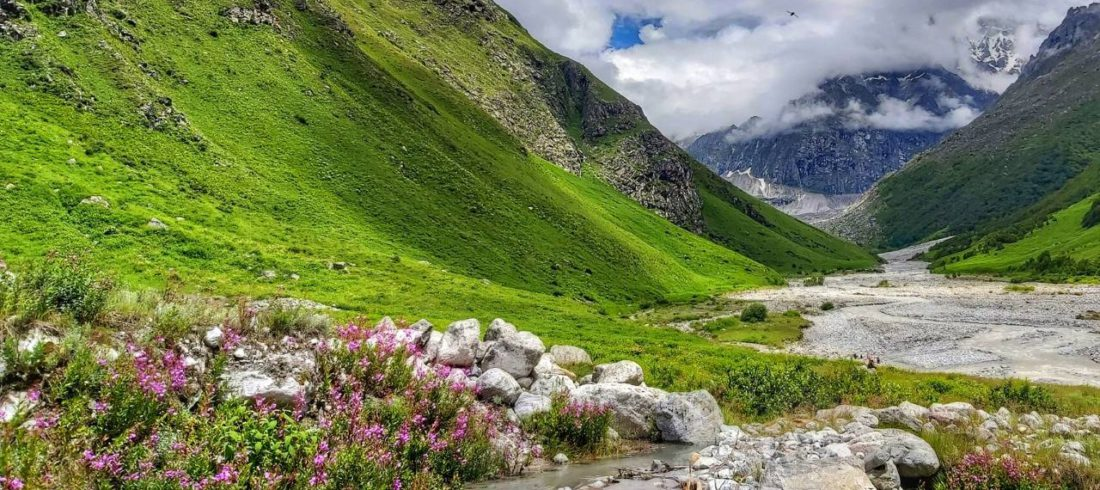 Valley of Flowers- The King of Colorful Vacations