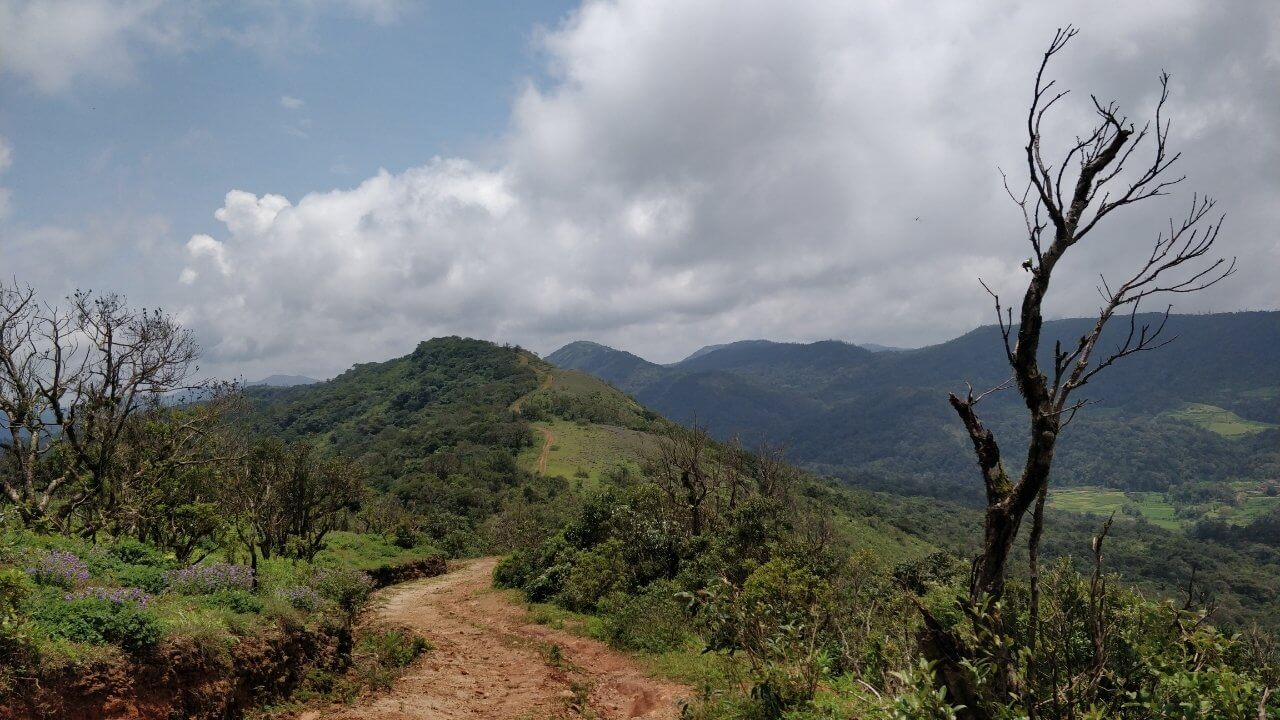 Take the road less travelled on our Shepherd's Coorg Trail Trek